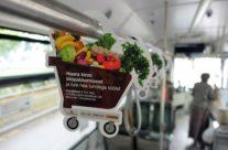 ABC Supermarkets – reklaam ühistranspordis