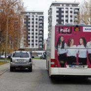 Maxima – kleebis bussi tagaküljel